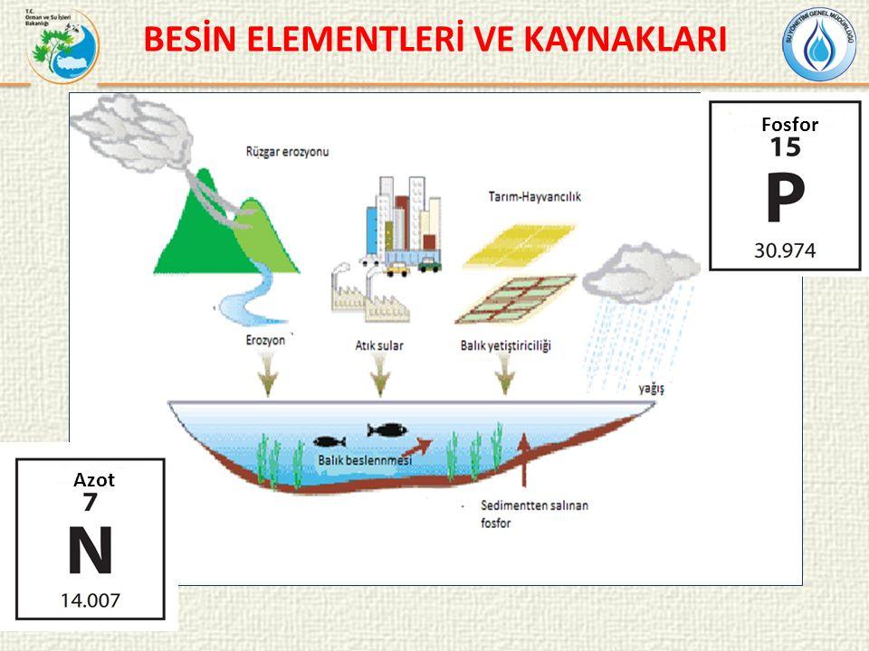 ALAN SEÇİMİ Derinlik Su değişim oranı Termal tabakalaşma Renk Akıntı
