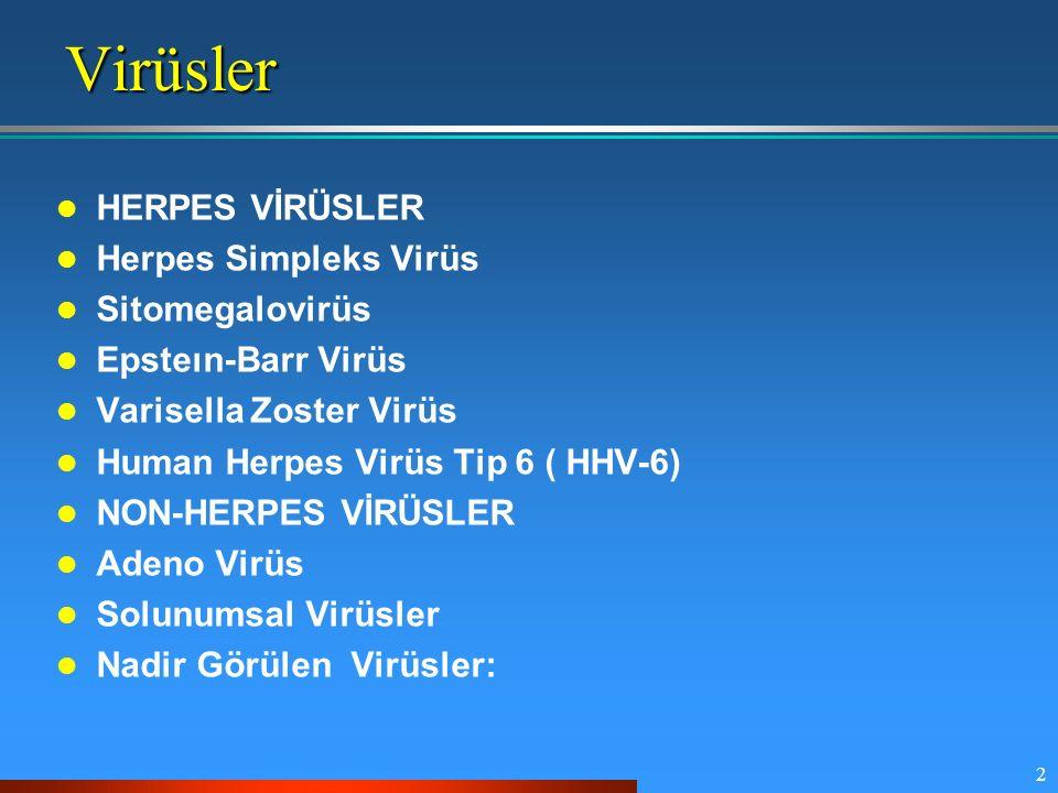2 HERPES VİRÜSLER Herpes Simpleks Virüs Sitomegalovirüs Epsteın-Barr Virüs Varisella Zoster Virüs Human Herpes Virüs Tip 6 ( HHV-6) NON-HERPES VİRÜSLE