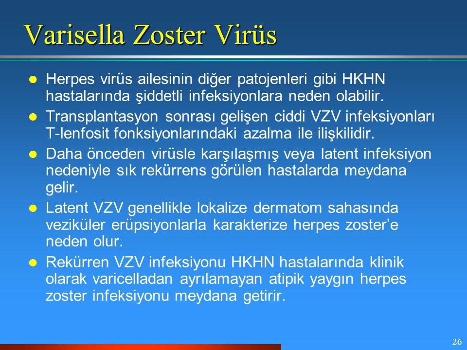 26 Varisella Zoster Virüs Herpes virüs ailesinin diğer patojenleri gibi HKHN hastalarında şiddetli infeksiyonlara neden olabilir. Transplantasyon sonr