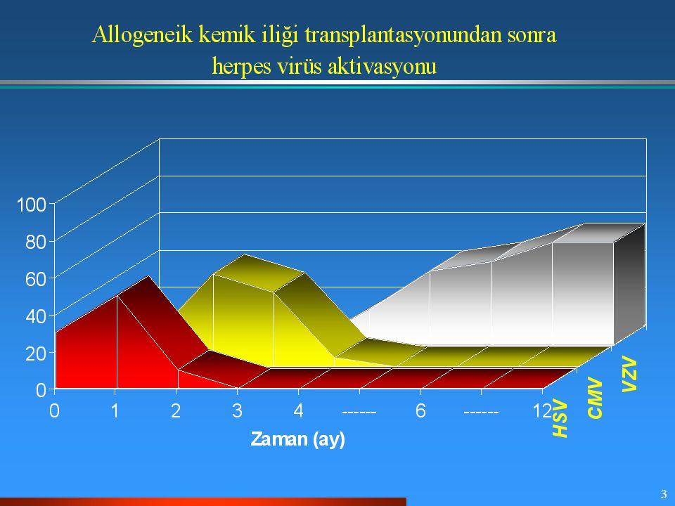 44 FHCRC'inde solunumsal virüs izolatları (1990-1996) Solunumsal virüs Oran (%) Respiratory synctial virüs Parainfluenza Tip I Tip II Tip III Rhinovirüs İnfluenza Tip A Tip B 44 (35 %) 38 (30 %) 18 4 16 31 (25 %) 14 (11 %) 12 2