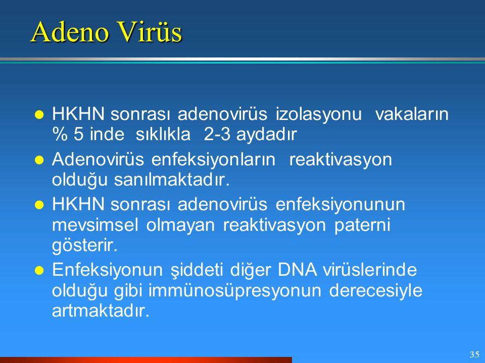 35 Adeno Virüs HKHN sonrası adenovirüs izolasyonu vakaların % 5 inde sıklıkla 2-3 aydadır Adenovirüs enfeksiyonların reaktivasyon olduğu sanılmaktadır