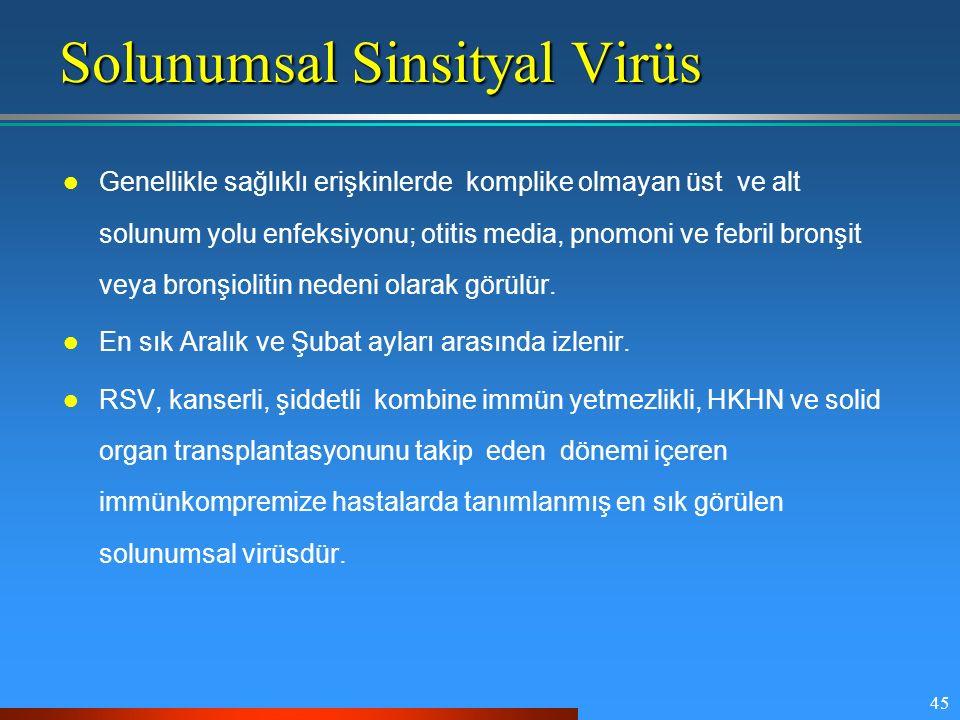 45 Solunumsal Sinsityal Virüs Genellikle sağlıklı erişkinlerde komplike olmayan üst ve alt solunum yolu enfeksiyonu; otitis media, pnomoni ve febril b