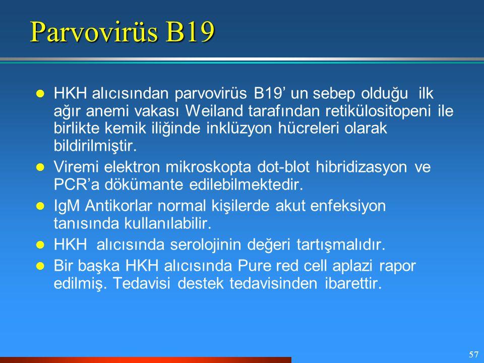 57 Parvovirüs B19 HKH alıcısından parvovirüs B19' un sebep olduğu ilk ağır anemi vakası Weiland tarafından retikülositopeni ile birlikte kemik iliğind