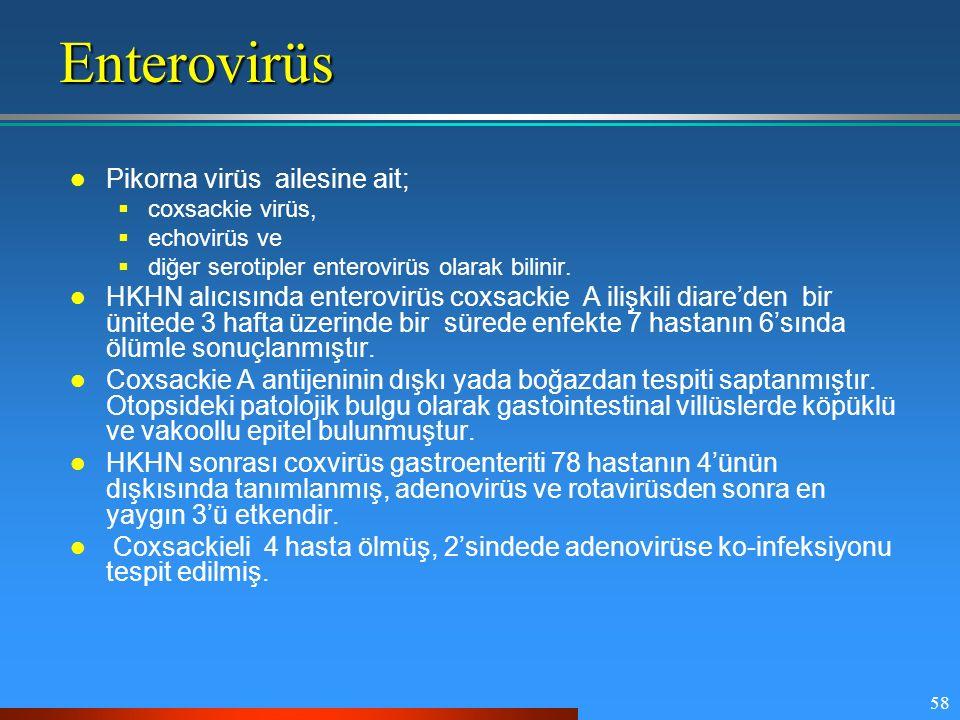 58Enterovirüs Pikorna virüs ailesine ait;  coxsackie virüs,  echovirüs ve  diğer serotipler enterovirüs olarak bilinir. HKHN alıcısında enterovirüs