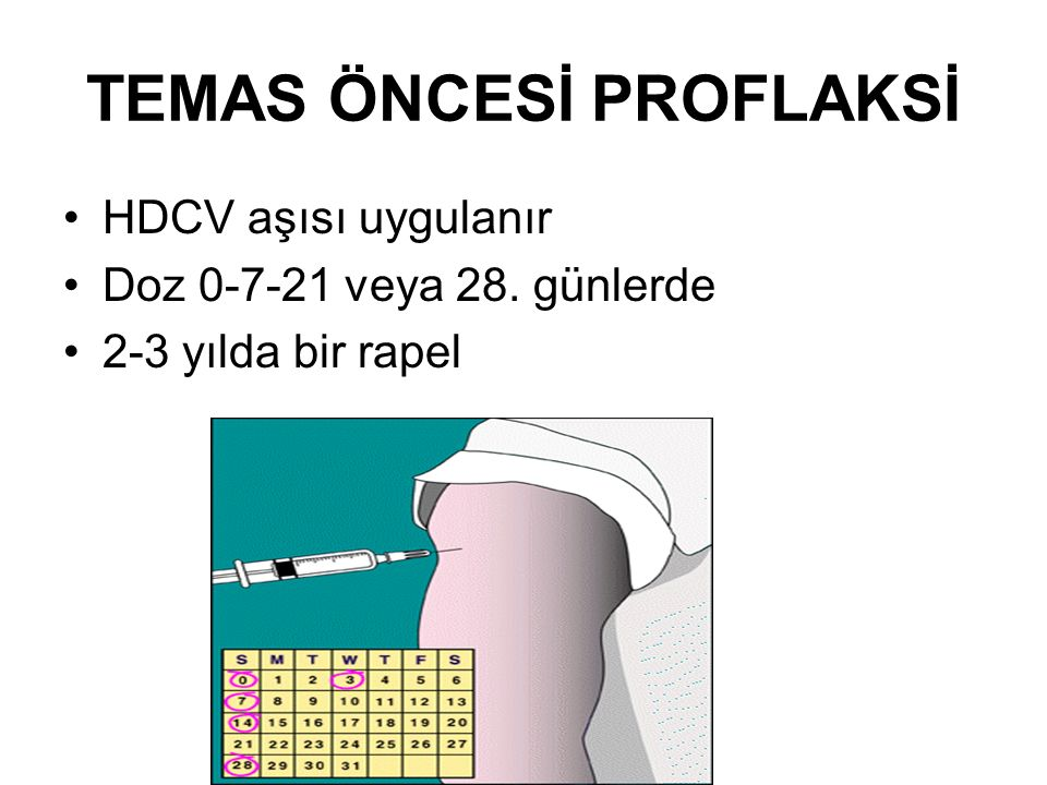 TEMAS ÖNCESİ PROFLAKSİ HDCV aşısı uygulanır Doz 0-7-21 veya 28. günlerde 2-3 yılda bir rapel