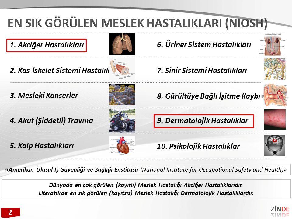 2. Kas-İskelet Sistemi Hastalıkları 3. Mesleki Kanserler 4. Akut (Şiddetli) Travma 5. Kalp Hastalıkları 6. Üriner Sistem Hastalıkları 1. Akciğer Hasta