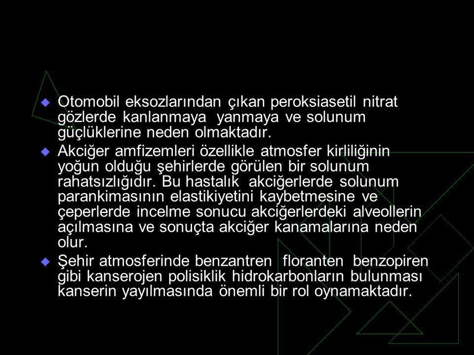  Türkiye'de 1993 Temmuz ayından sonra üretilen ve ithal edilen tüm motorlu taşıtlar kurşunsuz benzin kullanılabilirler.