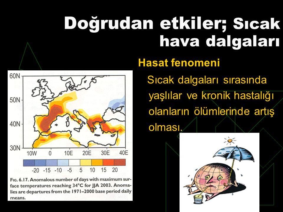 Doğrudan etkiler; Sıcak hava dalgaları Hasat fenomeni Sıcak dalgaları sırasında yaşlılar ve kronik hastalığı olanların ölümlerinde artış olması.