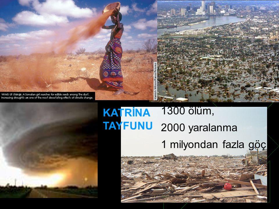 KATRİNA TAYFUNU 1300 ölüm, 2000 yaralanma 1 milyondan fazla göç