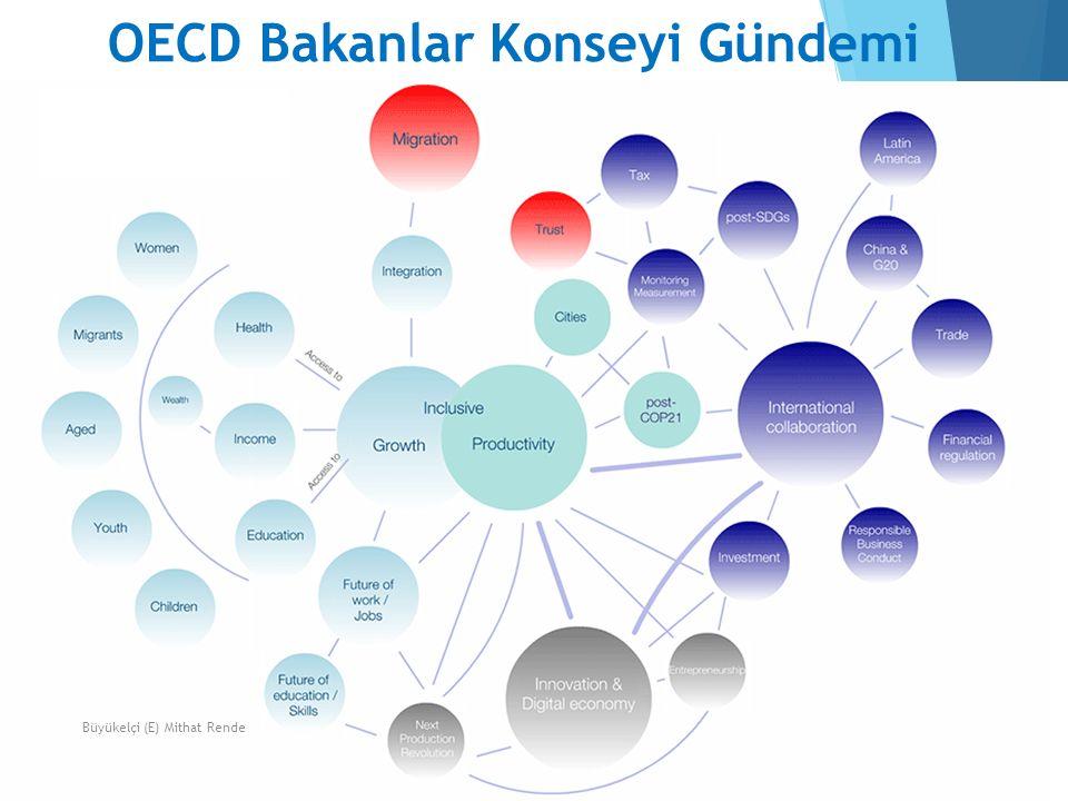 OECD Bakanlar Konseyi Gündemi 12Büyükelçi (E) Mithat Rende