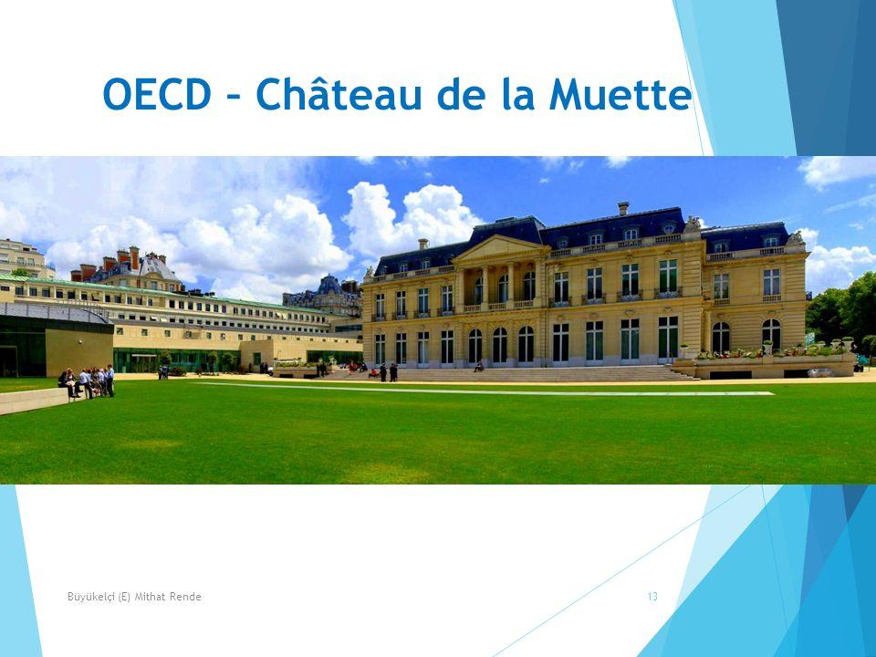 OECD – Château de la Muette 13Büyükelçi (E) Mithat Rende