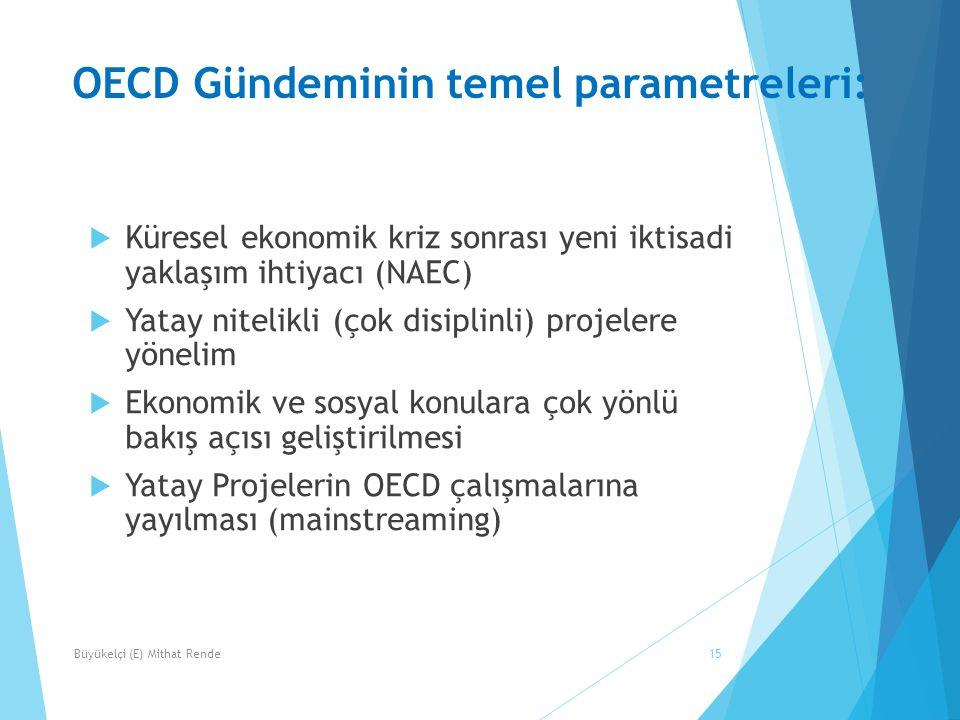 OECD Gündeminin temel parametreleri: 15  Küresel ekonomik kriz sonrası yeni iktisadi yaklaşım ihtiyacı (NAEC)  Yatay nitelikli (çok disiplinli) proj