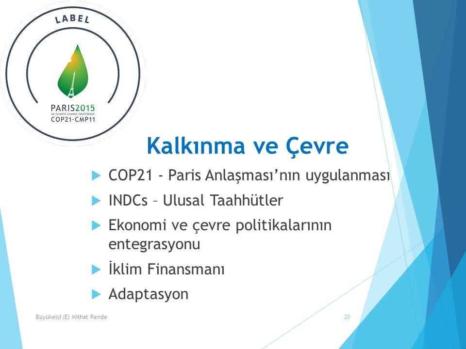 20 Kalkınma ve Çevre  COP21 - Paris Anlaşması'nın uygulanması  INDCs – Ulusal Taahhütler  Ekonomi ve çevre politikalarının entegrasyonu  İklim Finansmanı  Adaptasyon Büyükelçi (E) Mithat Rende