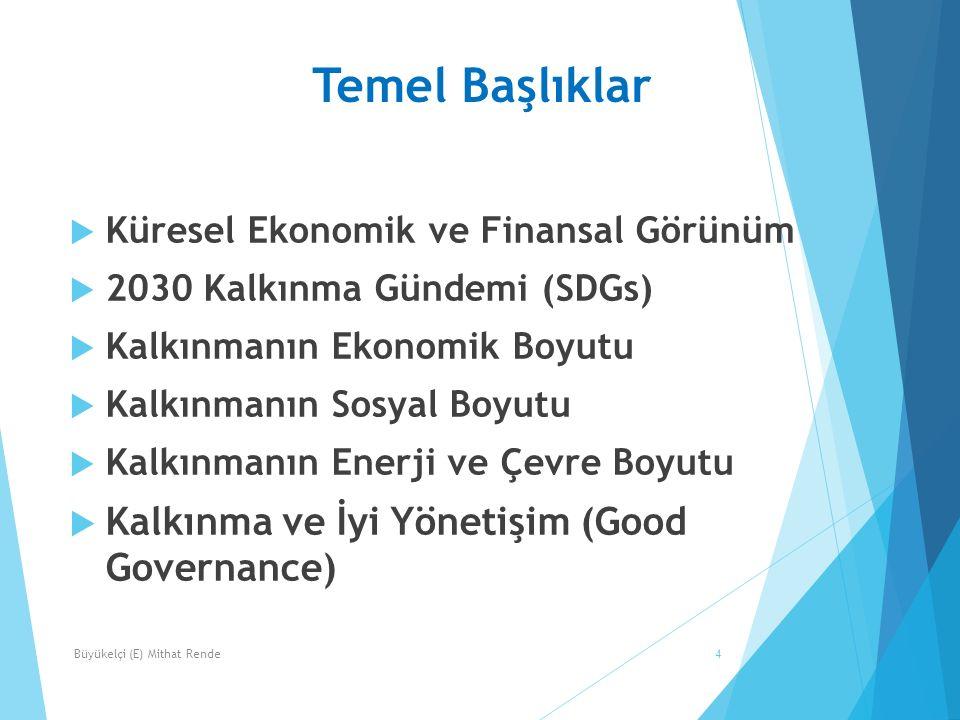 Temel Başlıklar  Küresel Ekonomik ve Finansal Görünüm  2030 Kalkınma Gündemi (SDGs)  Kalkınmanın Ekonomik Boyutu  Kalkınmanın Sosyal Boyutu  Kalkınmanın Enerji ve Çevre Boyutu  Kalkınma ve İyi Yönetişim (Good Governance) 4Büyükelçi (E) Mithat Rende