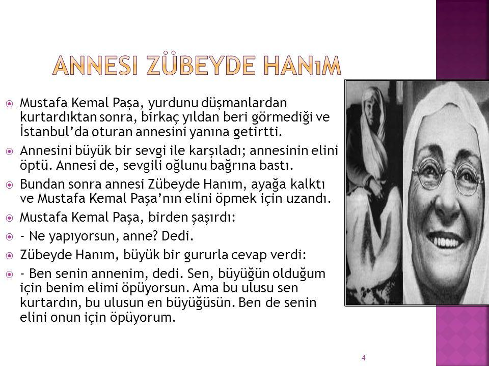  Mustafa Kemal Paşa, yurdunu düşmanlardan kurtardıktan sonra, birkaç yıldan beri görmediği ve İstanbul'da oturan annesini yanına getirtti.