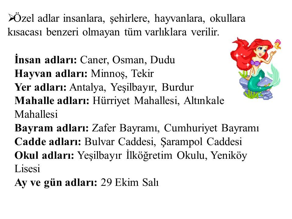  Özel adlar insanlara, şehirlere, hayvanlara, okullara kısacası benzeri olmayan tüm varlıklara verilir. İnsan adları: Caner, Osman, Dudu Hayvan adlar