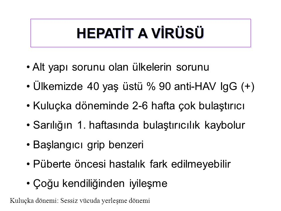 Alt yapı sorunu olan ülkelerin sorunu Ülkemizde 40 yaş üstü % 90 anti-HAV IgG (+) Kuluçka döneminde 2-6 hafta çok bulaştırıcı Sarılığın 1. haftasında