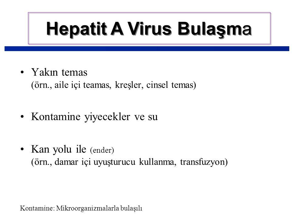Hepatit A Virus Bulaşma Yakın temas (örn., aile içi teamas, kreşler, cinsel temas) Kontamine yiyecekler ve su Kan yolu ile (ender) (örn., damar içi uyuşturucu kullanma, transfuzyon) Kontamine: Mikroorganizmalarla bulaşılı
