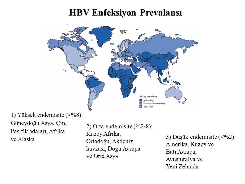 Orta endemisite (%2-8): 2) Orta endemisite (%2-8): Kuzey Afrika, Ortadoğu, Akdeniz havzası, Doğu Avrupa ve Orta Asya 3) Düşük endemisite (<%2): Amerika, Kuzey ve Batı Avrupa, Avusturalya ve Yeni Zelanda 1) Yüksek endemisite (>%8): Güneydoğu Asya, Çin, Pasifik adaları, Afrika ve Alaska HBV Enfeksiyon Prevalansı