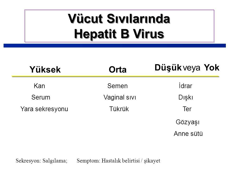 Vücut Sıvılarında Hepatit B Virus YüksekOrta Düşükveya Yok KanSemenİdrar SerumVaginal sıvıDışkı Yara sekresyonuTükrükTer Gözyaşı Anne sütü Sekresyon: Salgılama; Semptom: Hastalık belirtisi / şikayet