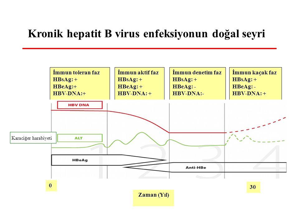 0 Zaman (Yıl) İmmun toleran faz HBsAg: + HBeAg:+HBV-DNA:+ İmmun aktif faz HBsAg: + HBeAg: + HBV-DNA: + İmmun denetim faz HBsAg: + HBeAg: - HBV-DNA:- İmmun kaçak faz HBsAg: + HBeAg: - HBV-DNA: + 30 Kronik hepatit B virus enfeksiyonun doğal seyri Karaciğer harabiyeti