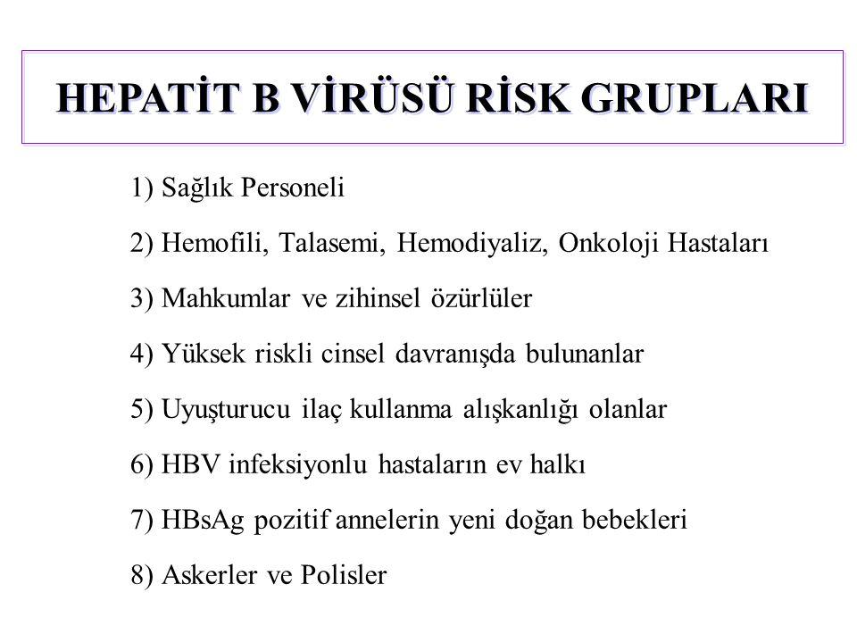 1) Sağlık Personeli 2) Hemofili, Talasemi, Hemodiyaliz, Onkoloji Hastaları 3) Mahkumlar ve zihinsel özürlüler 4) Yüksek riskli cinsel davranışda bulunanlar 5) Uyuşturucu ilaç kullanma alışkanlığı olanlar 6) HBV infeksiyonlu hastaların ev halkı 7) HBsAg pozitif annelerin yeni doğan bebekleri 8) Askerler ve Polisler