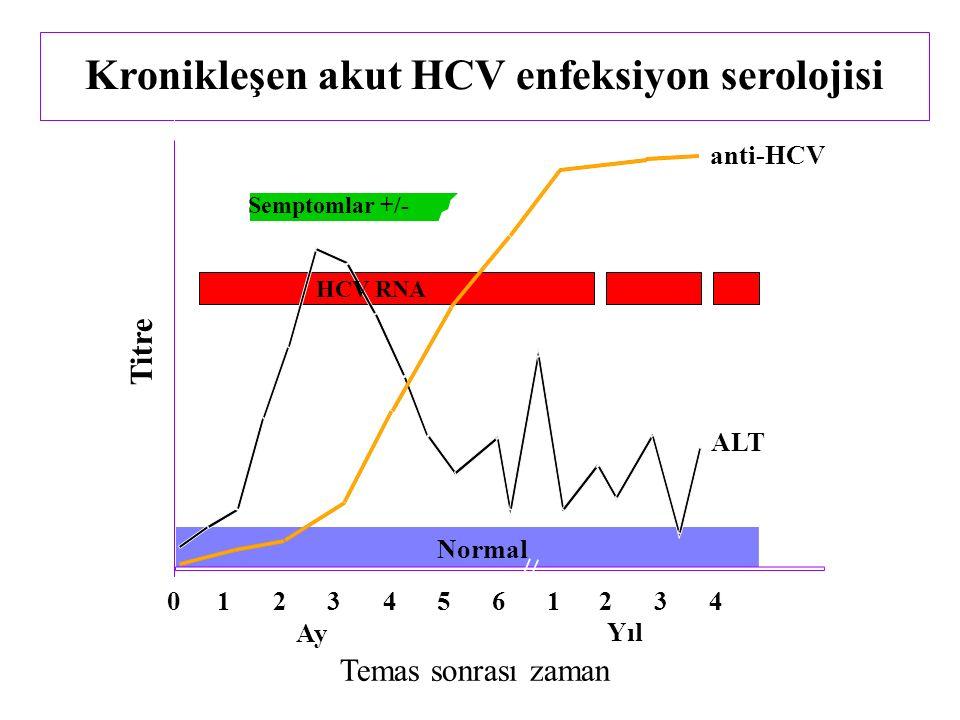 Kronikleşen akut HCV enfeksiyon serolojisi Semptomlar +/- Temas sonrası zaman Titre anti-HCV ALT Normal 012345 61234 Yıl Ay HCV RNA
