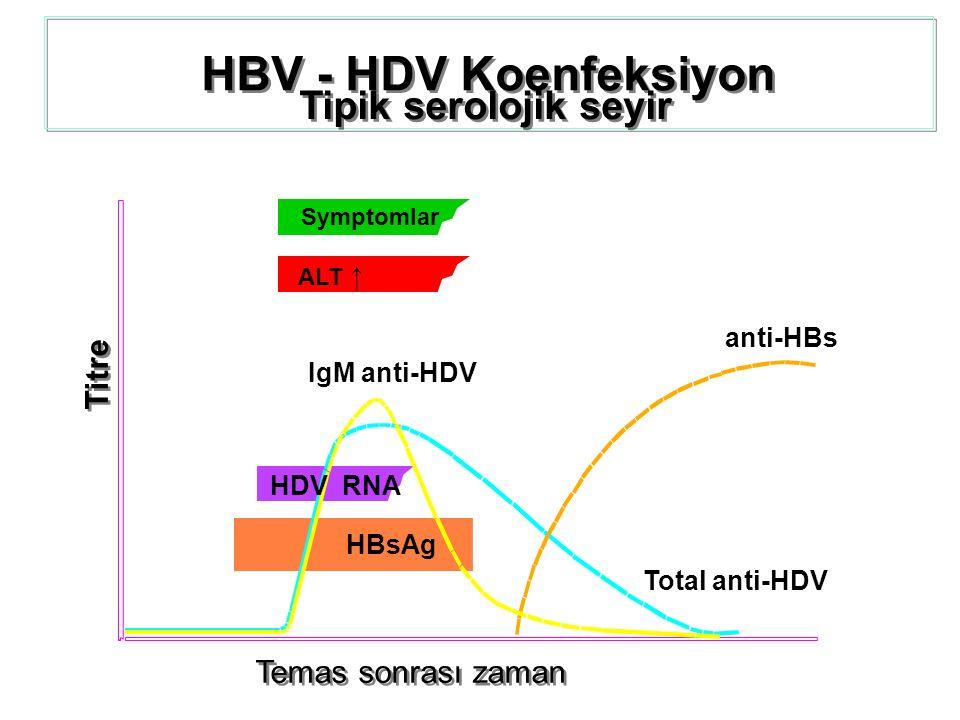 HBV - HDV Koenfeksiyon Tipik serolojik seyir Temas sonrası zaman Titre anti-HBs Symptomlar ALT ↑ Total anti-HDV IgM anti-HDV HDV RNA HBsAg