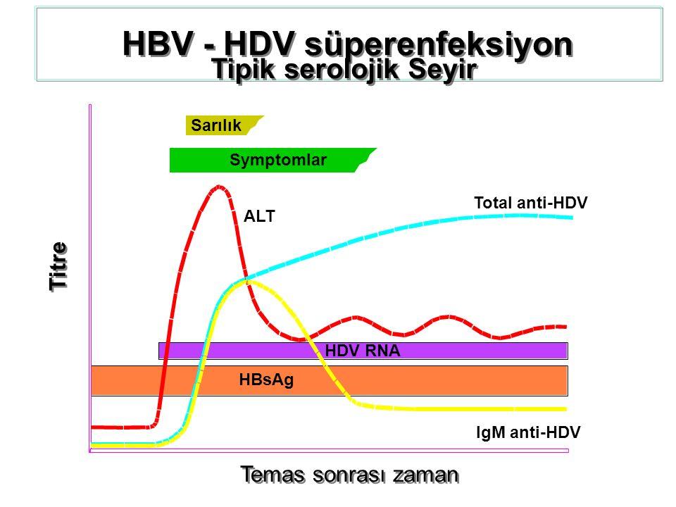 HBV - HDV süperenfeksiyon Tipik serolojik Seyir Temas sonrası zaman Titre Sarılık Symptomlar ALT Total anti-HDV IgM anti-HDV HDV RNA HBsAg