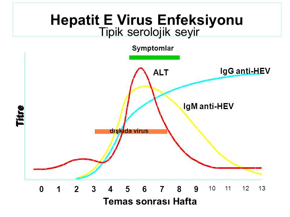 Hepatit E Virus Enfeksiyonu Tipik serolojik seyir Temas sonrası Hafta Titre Symptomlar ALT IgG anti-HEV IgM anti-HEV dışkıda virus 0123456789 10111213