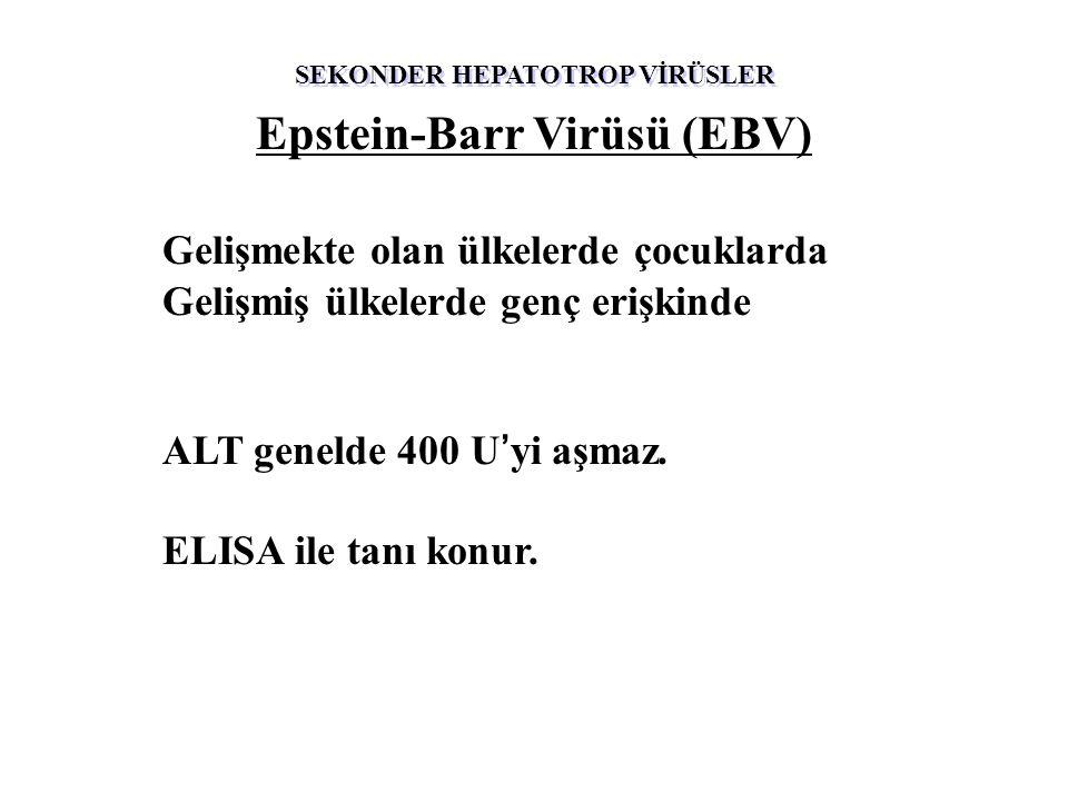 Epstein-Barr Virüsü (EBV) Gelişmekte olan ülkelerde çocuklarda Gelişmiş ülkelerde genç erişkinde ALT genelde 400 U'yi aşmaz.
