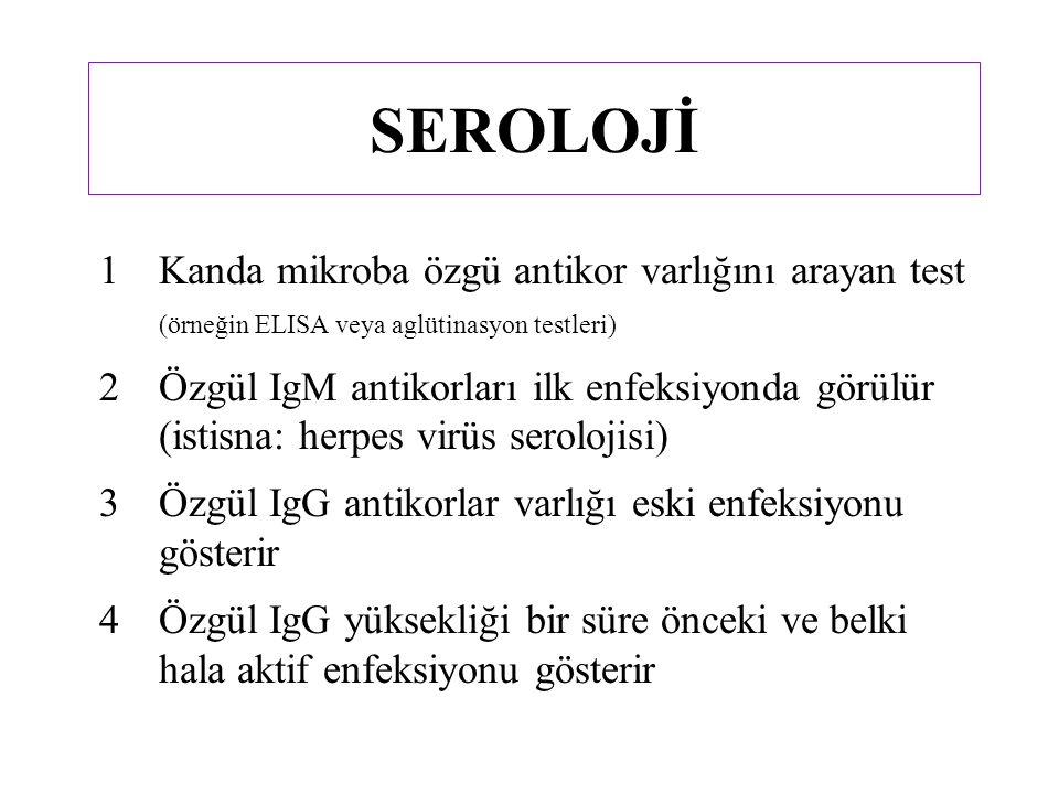 Serotip (serolojik yöntemle tip çeşitleri tanınmış) HBsAg serolojisine göre (s: yüzey) – a (s bölgesinde iyi korunmuş bölge) – d veya y – w veya r adw, adr, ayw ve nadiren ayrı serotipleri