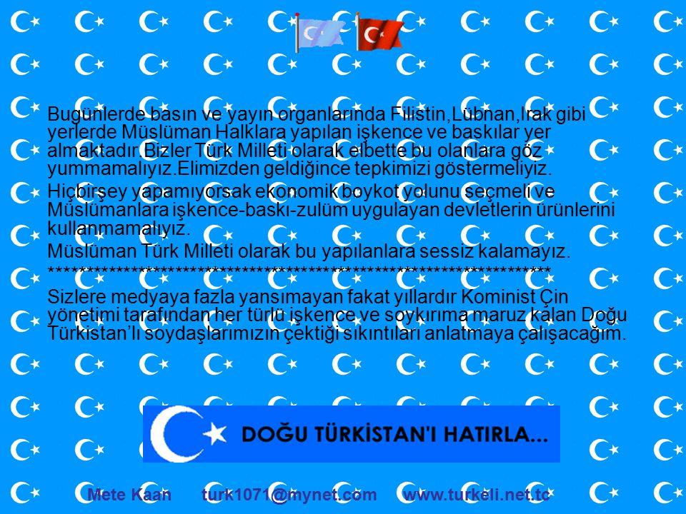 Bugünlerde basın ve yayın organlarında Filistin,Lübnan,Irak gibi yerlerde Müslüman Halklara yapılan işkence ve baskılar yer almaktadır.Bizler Türk Milleti olarak elbette bu olanlara göz yummamalıyız.Elimizden geldiğince tepkimizi göstermeliyiz.