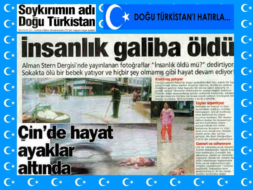 Mete Kaan turk1071@mynet.com www.turkeli.net.tc Seninle at koşturduğumuz yaylalar vardı ya, Unuttum şimdi.