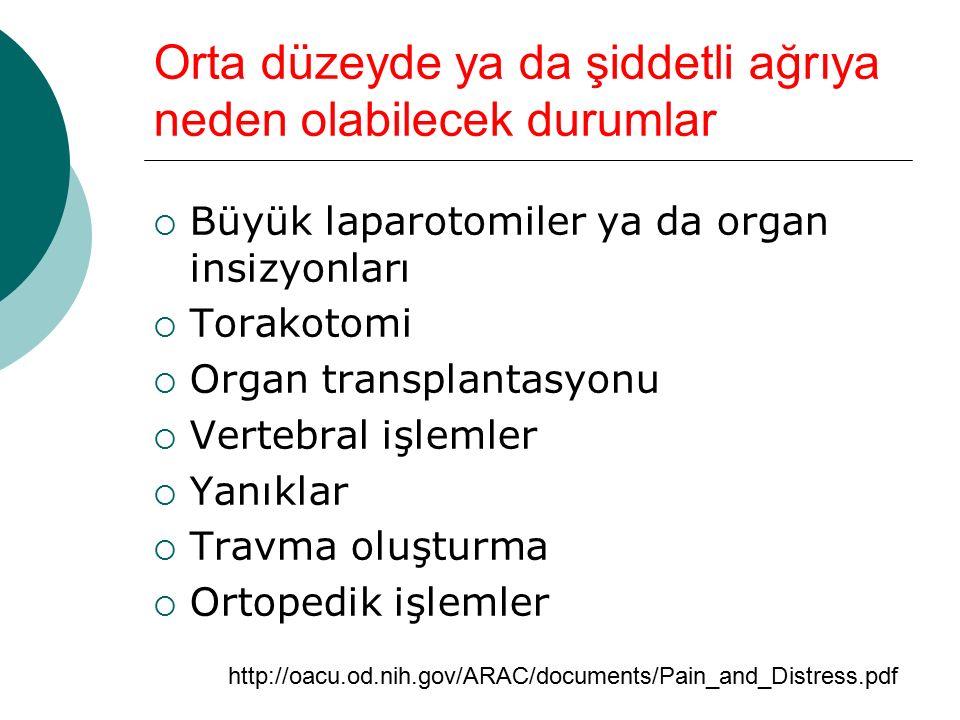 Orta düzeyde ya da şiddetli ağrıya neden olabilecek durumlar  Büyük laparotomiler ya da organ insizyonları  Torakotomi  Organ transplantasyonu  Vertebral işlemler  Yanıklar  Travma oluşturma  Ortopedik işlemler http://oacu.od.nih.gov/ARAC/documents/Pain_and_Distress.pdf