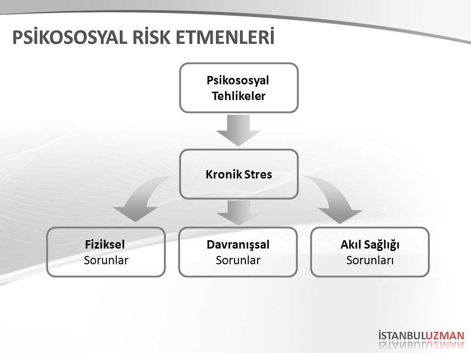 Tehlikeler Kronik Stres Fiziksel Sorunlar Davranışsal Sorunlar Akıl Sağlığı Sorunları