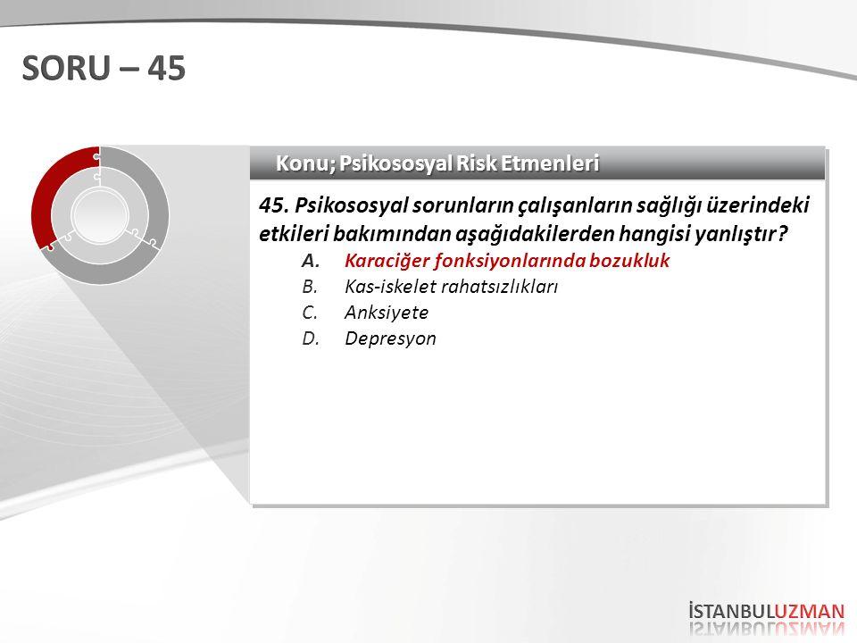 Konu; Psikososyal Risk Etmenleri 45.