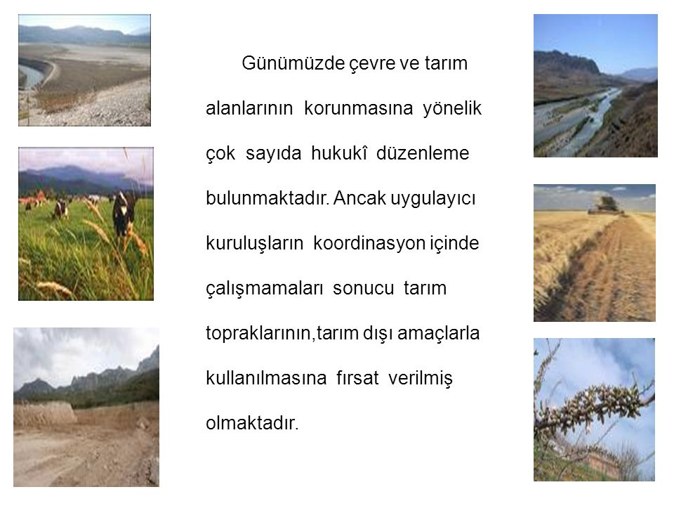 Günümüzde çevre ve tarım alanlarının korunmasına yönelik çok sayıda hukukî düzenleme bulunmaktadır. Ancak uygulayıcı kuruluşların koordinasyon içinde