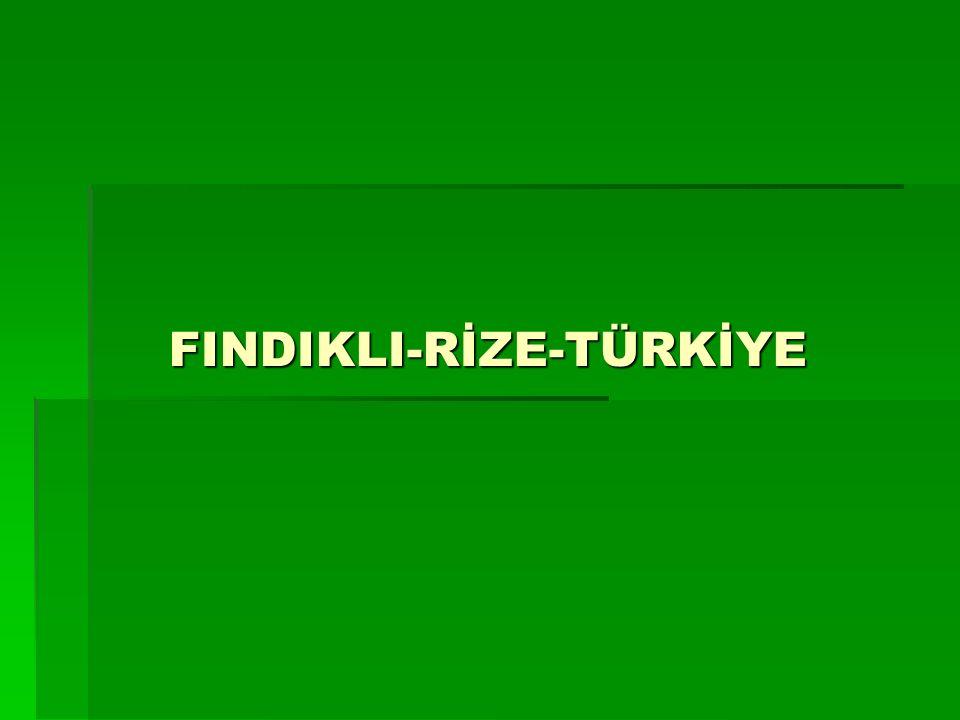 FINDIKLI-RİZE-TÜRKİYE
