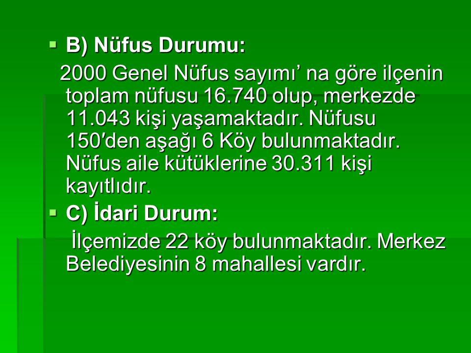  B) Nüfus Durumu: 2000 Genel Nüfus sayımı' na göre ilçenin toplam nüfusu 16.740 olup, merkezde 11.043 kişi yaşamaktadır.