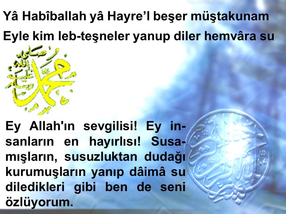 Yâ Habîballah yâ Hayre'l beşer müştakunam Eyle kim leb-teşneler yanup diler hemvâra su Ey Allah'ın sevgilisi! Ey in- sanların en hayırlısı! Susa- mışl