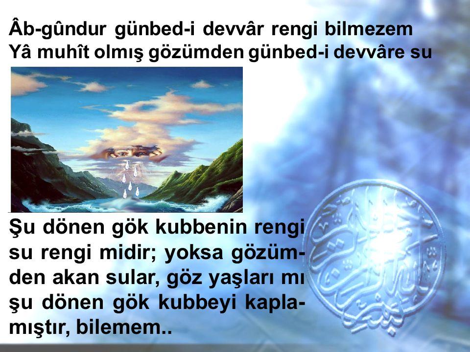 Âb-gûndur günbed-i devvâr rengi bilmezem Yâ muhît olmış gözümden günbed-i devvâre su Tecahül-i Arif: Gökyüzünün mavi olduğunu bilmez gibi davranması Hüsn-i Talil: Göğe kendi gözyaşlarının renk verdiğini söylemesi Mübalağa: Gözyaşlarının gökyüzünü kapladığını söylemesi Tenasüp: 'Göz, aşk, su, saç-; od, dutuş-' kelimeleri arasında.