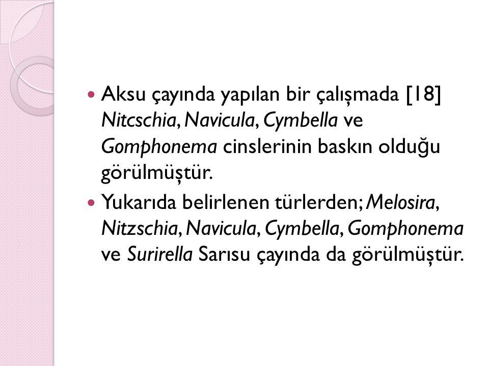Aksu çayında yapılan bir çalışmada [18] Nitcschia, Navicula, Cymbella ve Gomphonema cinslerinin baskın oldu ğ u görülmüştür. Yukarıda belirlenen türle