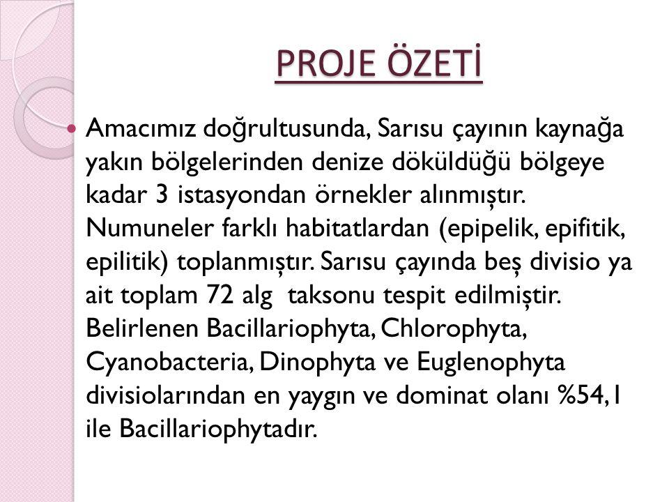 TEŞEKKÜR TEŞEKKÜR Organizasyonu yürüten Prof.