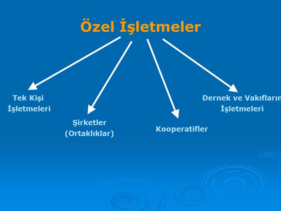 Özel İşletmeler Tek Kişi İşletmeleri Kooperatifler Şirketler (Ortaklıklar) Dernek ve Vakıfların İşletmeleri