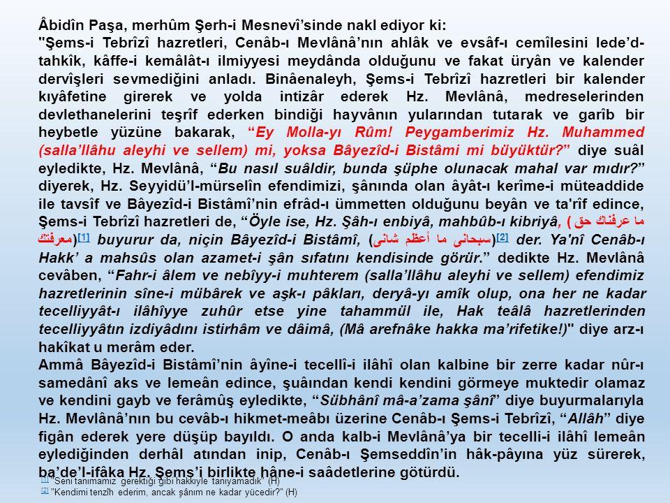 Âbidîn Paşa, merhûm Şerh-i Mesnevî'sinde nakl ediyor ki: Şems-i Tebrîzî hazretleri, Cenâb-ı Mevlânâ'nın ahlâk ve evsâf-ı cemîlesini lede'd- tahkîk, kâffe-i kemâlât-ı ilmiyyesi meydânda olduğunu ve fakat üryân ve kalender dervîşleri sevmediğini anladı.
