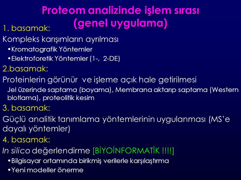 Proteom analizinde işlem sırası (genel uygulama) 1.