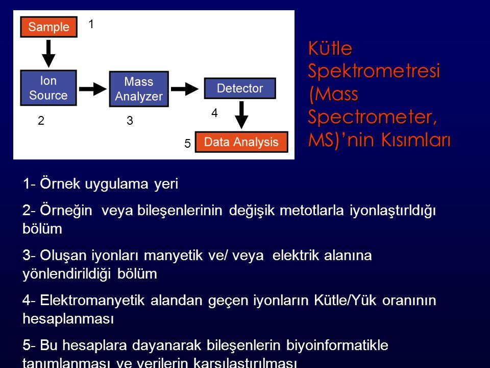 1 23 4 5 1- Örnek uygulama yeri 2- Örneğin veya bileşenlerinin değişik metotlarla iyonlaştırldığı bölüm 3- Oluşan iyonları manyetik ve/ veya elektrik alanına yönlendirildiği bölüm 4- Elektromanyetik alandan geçen iyonların Kütle/Yük oranının hesaplanması 5- Bu hesaplara dayanarak bileşenlerin biyoinformatikle tanımlanması ve verilerin karşılaştırılması Kütle Spektrometresi (Mass Spectrometer, MS)'nin Kısımları