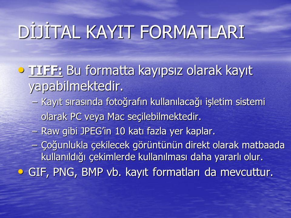 DİJİTAL KAYIT FORMATLARI TIFF: Bu formatta kayıpsız olarak kayıt yapabilmektedir. TIFF: Bu formatta kayıpsız olarak kayıt yapabilmektedir. –Kayıt sıra