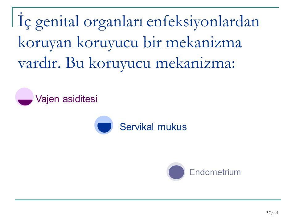 İç genital organları enfeksiyonlardan koruyan koruyucu bir mekanizma vardır.